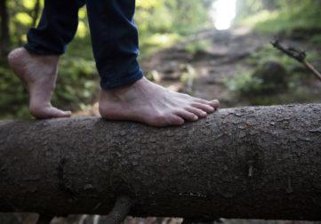 jalat puunrungolla