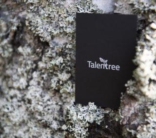 Haemme b2b-myyjää talentti-tiimiimme
