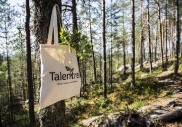 Talentreen logokassi puun oksassa
