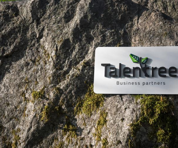 talentreen logokyltti kalliossa