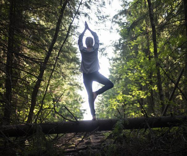 tasapainottelija metsän rajalla
